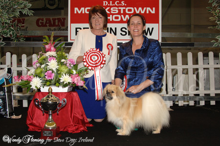 Best in Show - Monkstown 2014