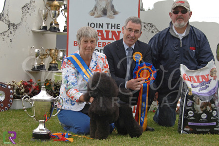 Best in Show - Celtic Winners 2014