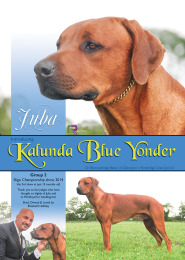 Kalunda Advert - August 2014