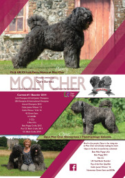 Mon Cher Advert - August 2014