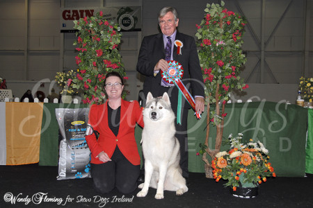 Best in Show - Cloghran 2014